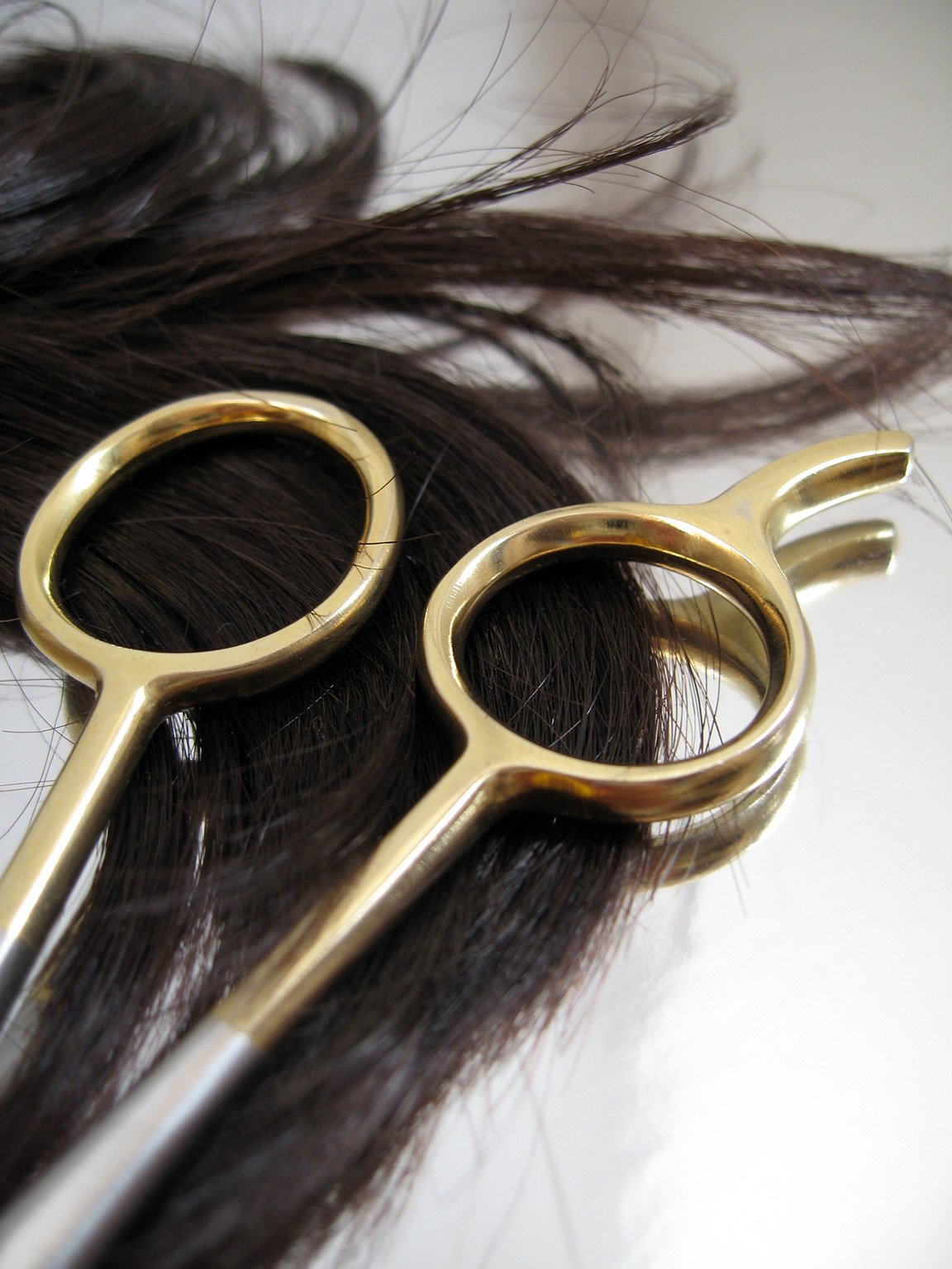 Hair & Scissors at Lada Salon & Spa in Lawrence, KS